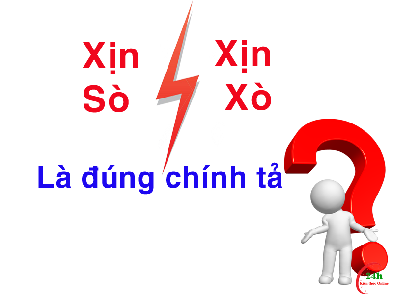 xin-so-hay-xin-xo